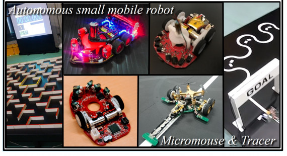 Micro Mouse Racer's
