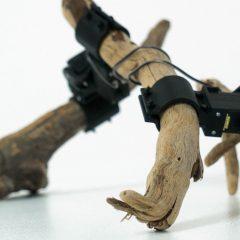 東京大学とPreferred networksの研究者によって作られた木の枝が自走するロボット「Walk」